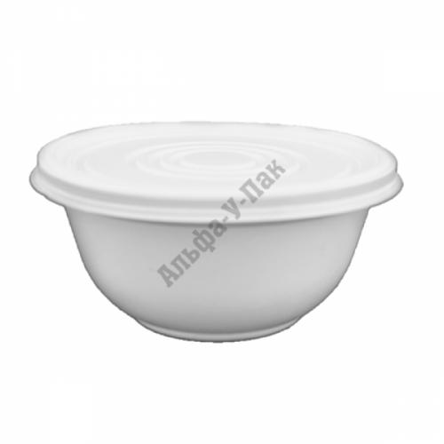 Тарелка ВСП суповая 0.500 d=135mm с крышкой